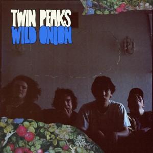 source: Twin Peaks