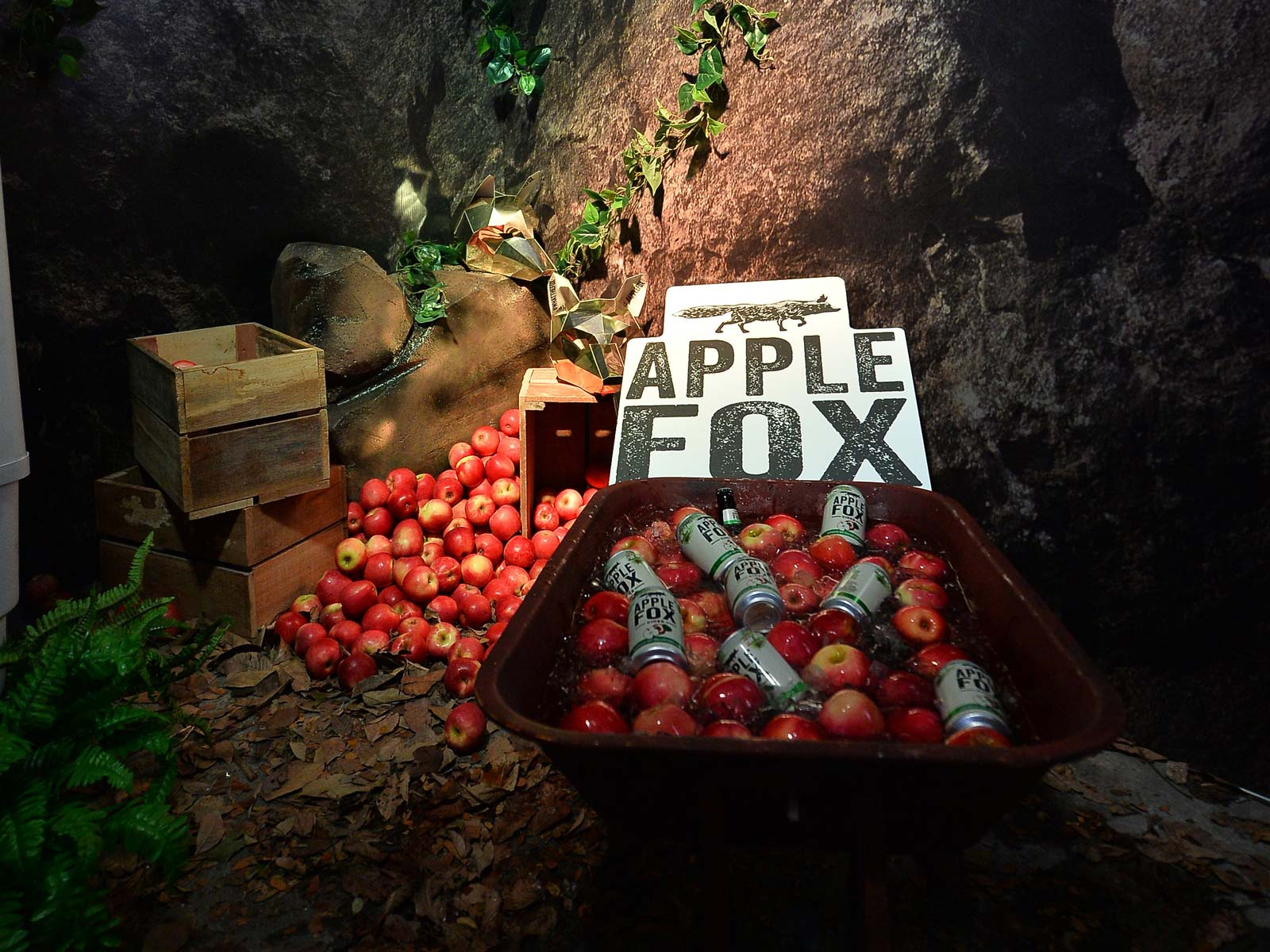 Image result for apple fox cider