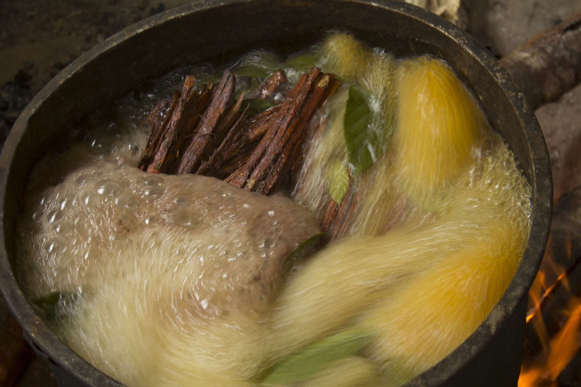 VICE Doc Explores Hallucinogenic Tea That Makes You Poop Out